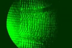 レーザー干渉像
